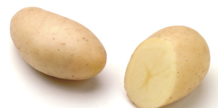 Pomme de terre : la belle de Fontenay