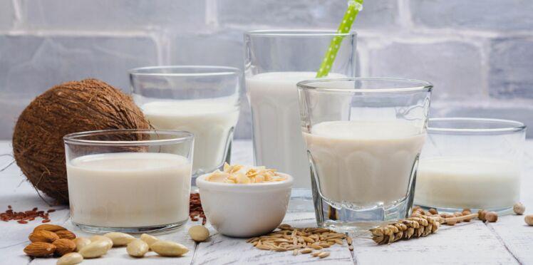 Lait ou boisson végétale : que choisir pour cuisiner, et leurs atouts santé