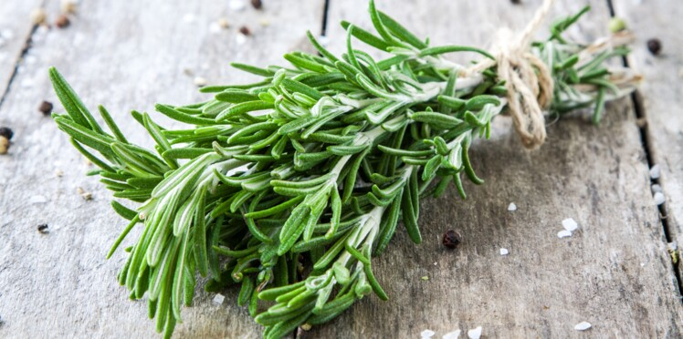 Petit guide des condiments indispensables pour parfumer vos plats
