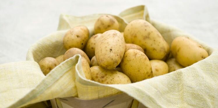 Tout savoir sur la pomme de terre