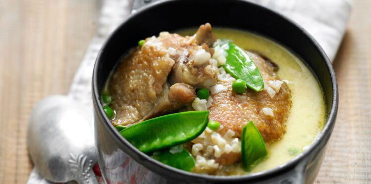 Poulet à la crème : 10 recettes délicieuses pour régaler familles et amis