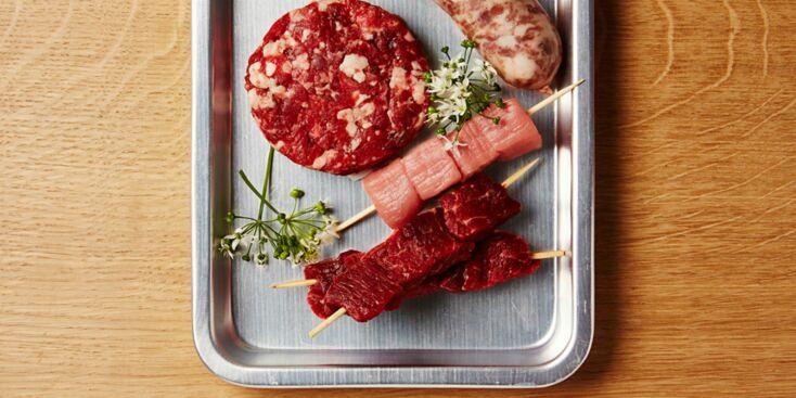 Quelle viande choisir pour le barbecue