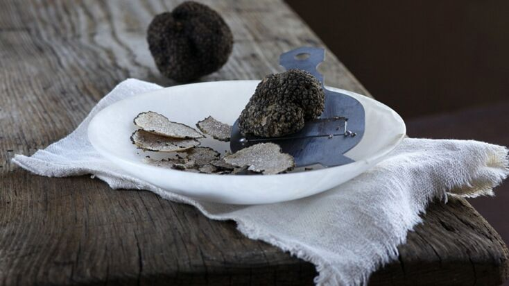 Tout savoir sur la truffe