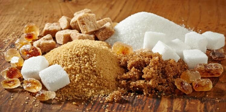 Tout savoir sur le sucre
