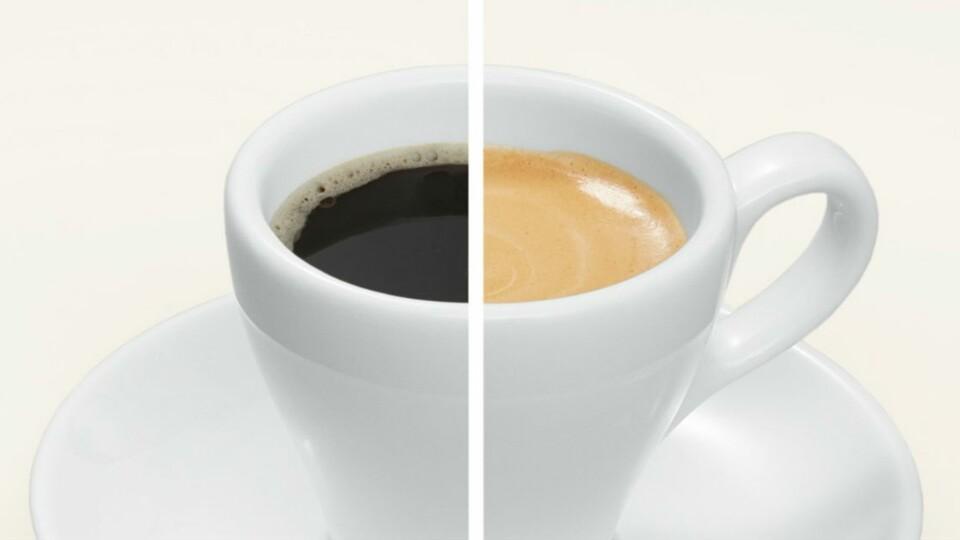 Utiliser de l'eau filtrée pour préparer son café