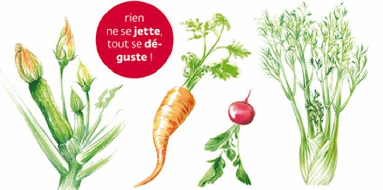 Apprenez à cuisiner les légumes de la tête aux pieds !
