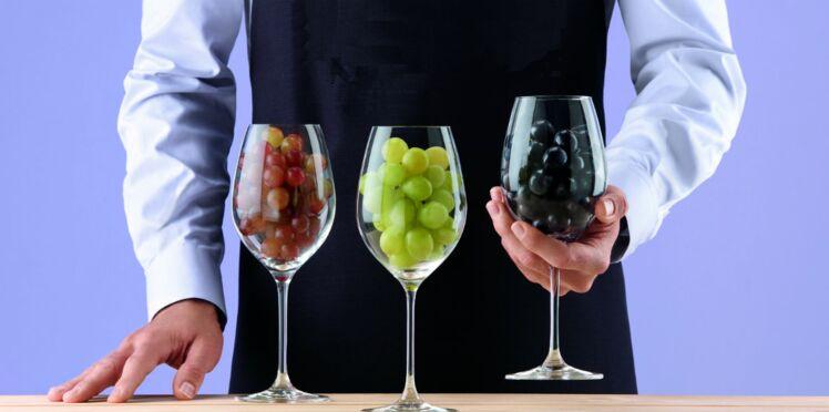 Pour tout savoir sur le vin