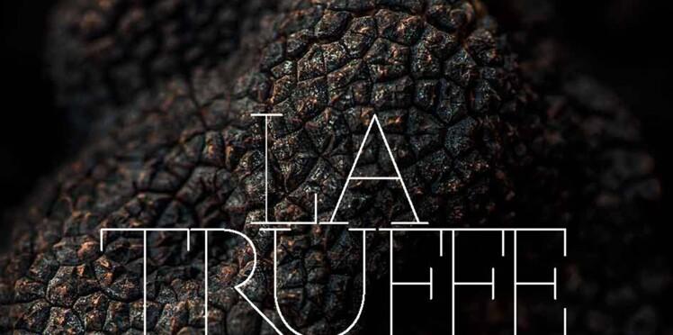 Truffe noire : 14 chefs signent 80 recettes