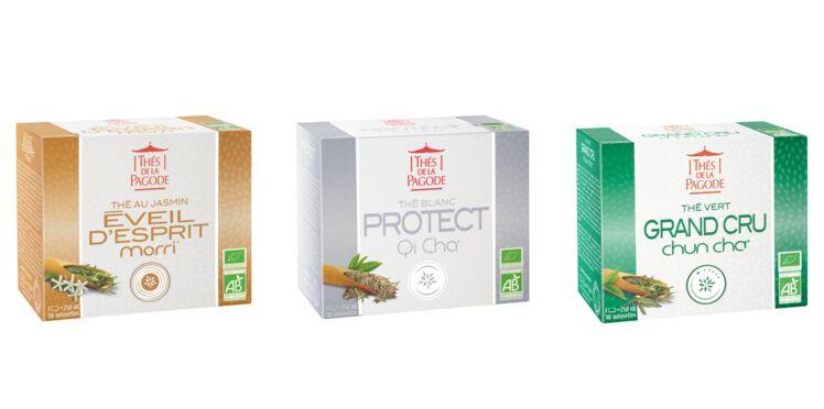 On craque pour ces thés bienfaisants !