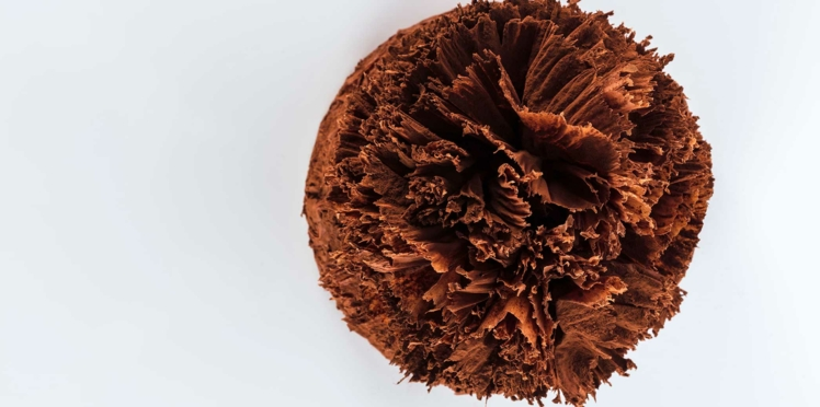 Le Meilleur Pâtissier : la recette du gâteau Président de Mercotte