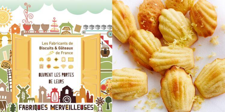 Partez à la découverte des biscuits et gâteaux de nos régions