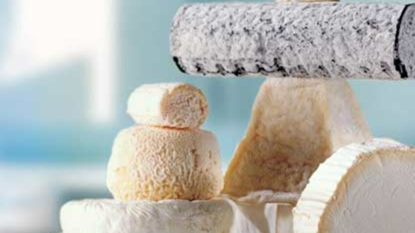 Fondu ou émietté, le fromage de chèvre se glisse partout