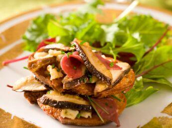 Nos meilleures recettes aux champignons