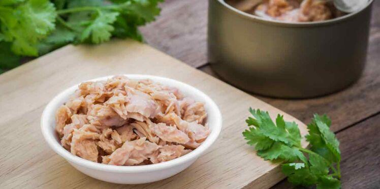 Thon en boite : comment le choisir et le cuisiner ?