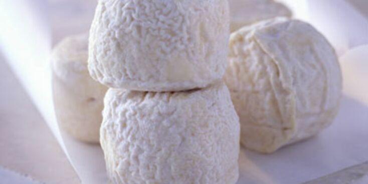 Tout savoir sur le fromage de chèvre