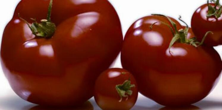 Et si c'était la fin des tomates sans goût ?