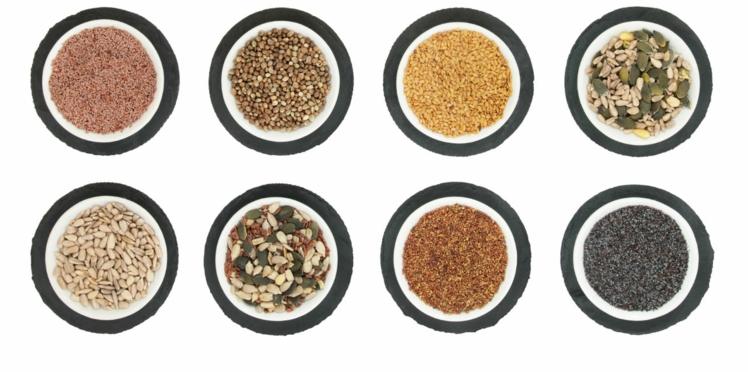 Les petites graines qui montent