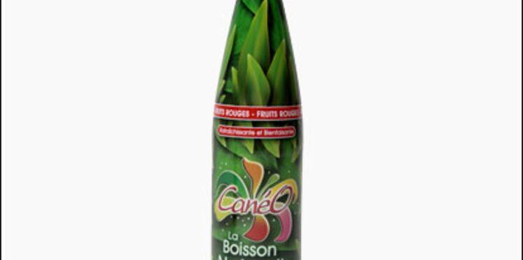 Nouveau: une boisson naturelle aux plantes