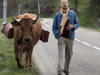 """Ciné: on a vu et aimé """"La vache"""" et """"Zootopie"""""""