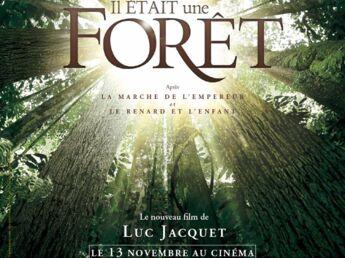 Coup de coeur ciné : Il était une forêt et Evasion