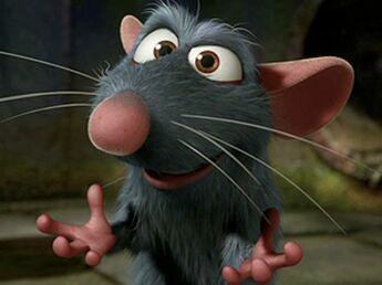 Petit rat deviendra grand chef