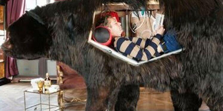 Insolite : il va vivre pendant quinze jours dans un ours