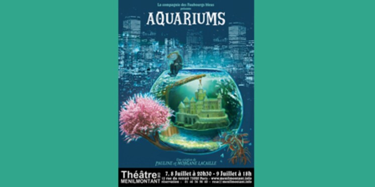 Aquariums : un spectacle à quatre mains