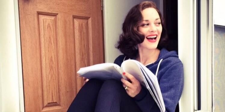 Divorce d'Angelina Jolie et Brad Pitt : Marion Cotillard met fin aux rumeurs