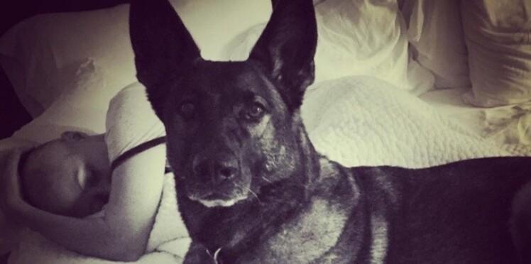Shannen Doherty: son cancer détecté par sa chienne