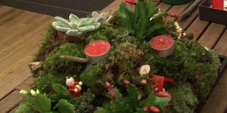 Fabriquez votre centre de table végétal pour les fêtes