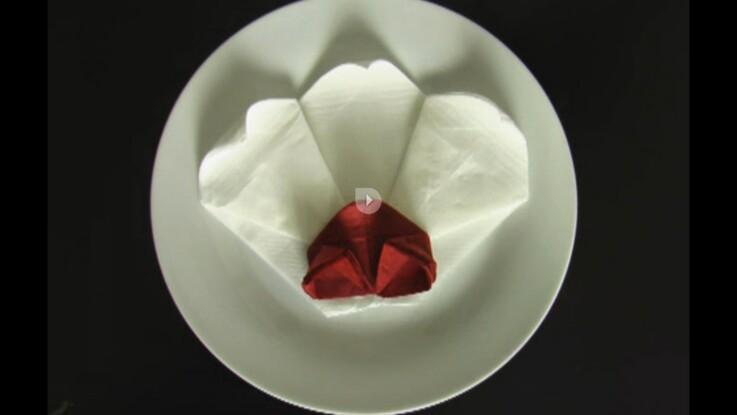 Pliage de serviette en forme d'orchidée