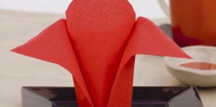 Pliage de serviettes : tous nos modèles en vidéo : Femme Actuelle Le MAG