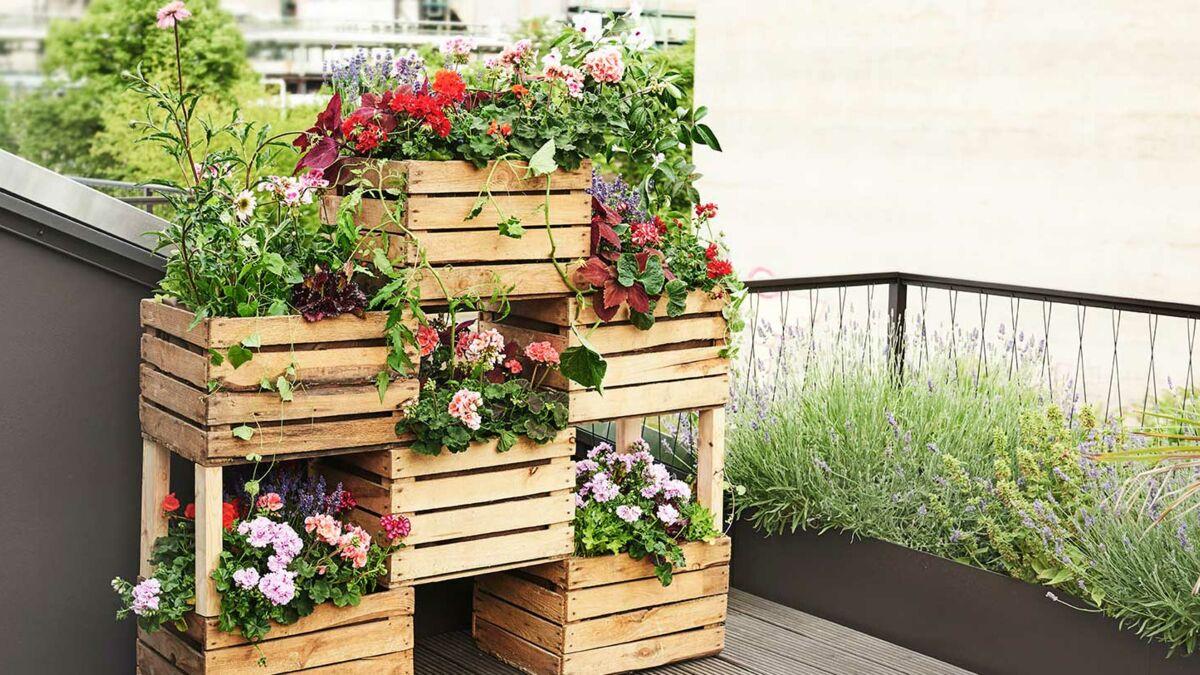 Brise Vue A Faire Soi Meme diy : fabriquer un brise-vue végétal avec des cagettes