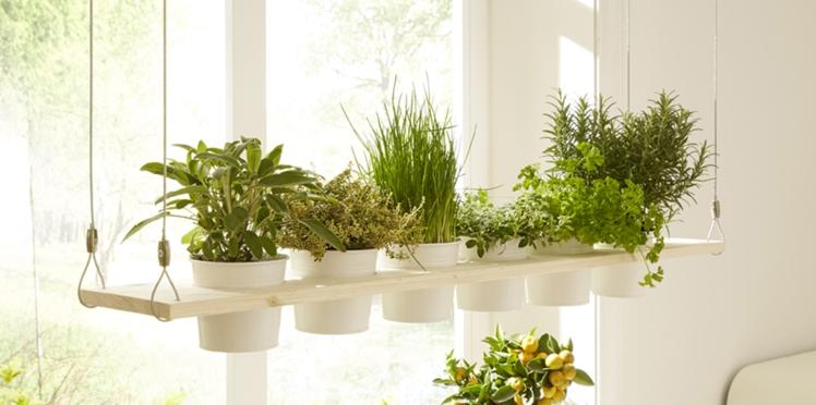 Je fabrique un jardin suspendu pour ma cuisine
