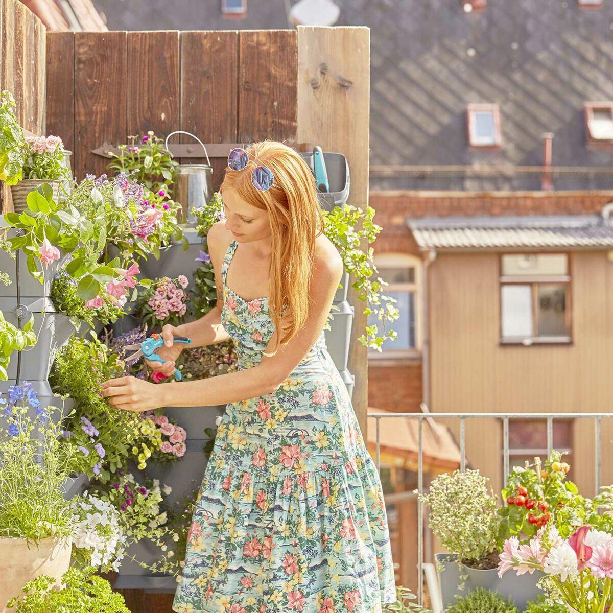 Plantes Pour Terrasse Sud Est balcon, terrasse, rebord de fenêtre… nos idées futées pour