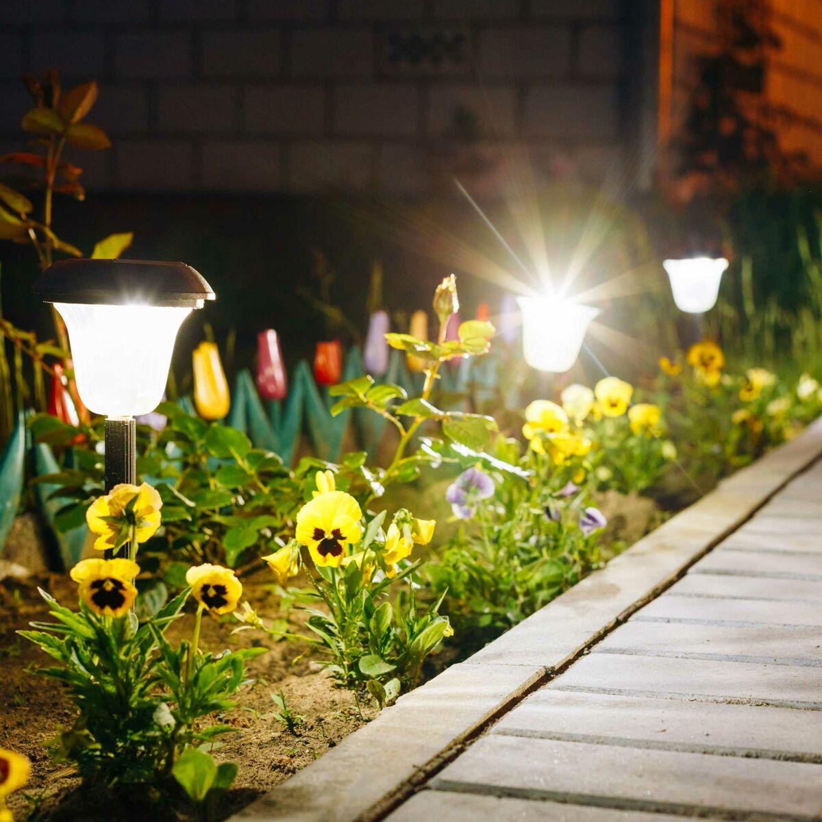 Lampe Energie Solaire Interieur lampes solaires, comment les faire redémarrer : femme