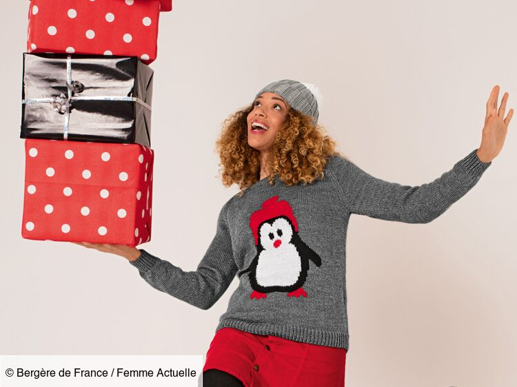 Tricot Pour Femme Un Pull De Noël Motif Pingouin En