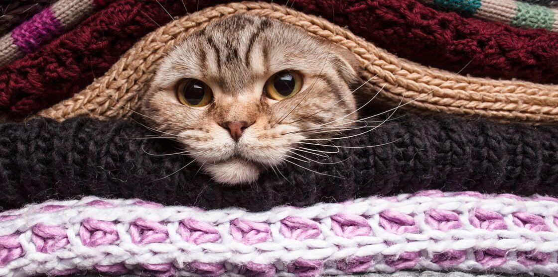 Tuto Crochet Facile Démo De La Maille Coulée Par Zak
