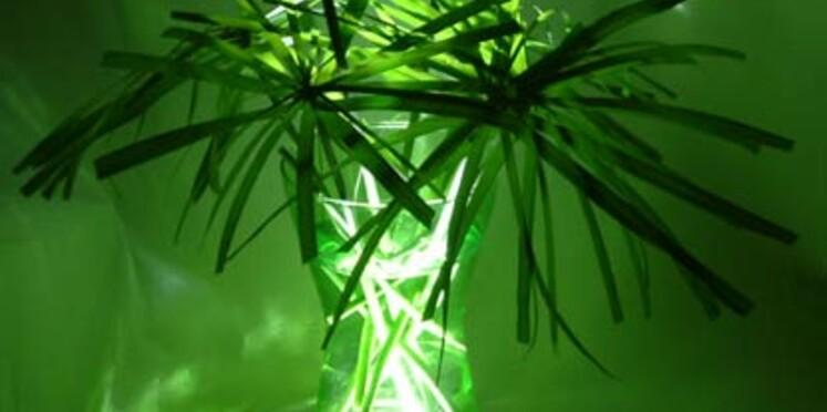 Un vase lumineux