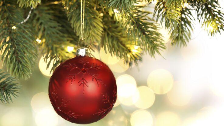 Comment bien décorer son sapin de Noël ?