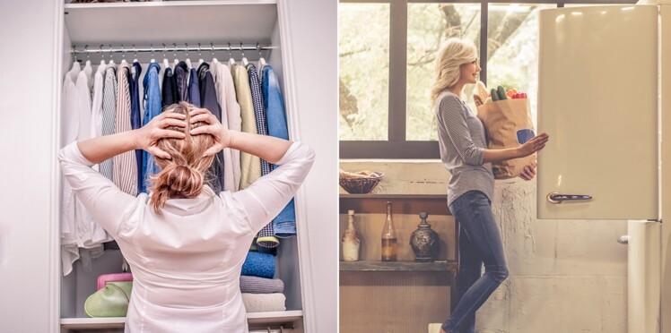 Comment distinguer les mites alimentaires des mites de vêtement ?