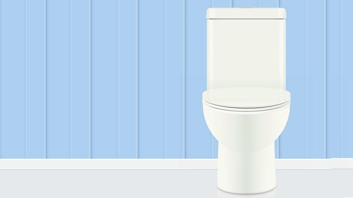 Nettoyer Lunette Toilettes Vinaigre Blanc pourquoi il ne faut jamais laver ses toilettes à l'eau de