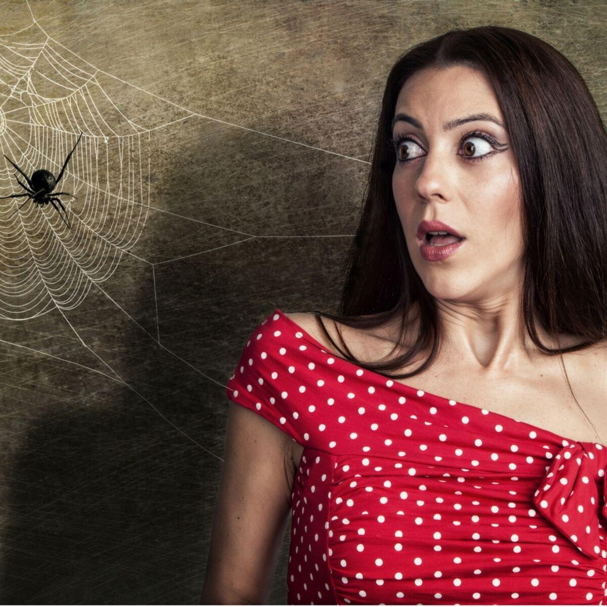 Astuces Naturelles Pour Se Débarrasser Des Fourmis les astuces géniales pour se débarrasser des araignées