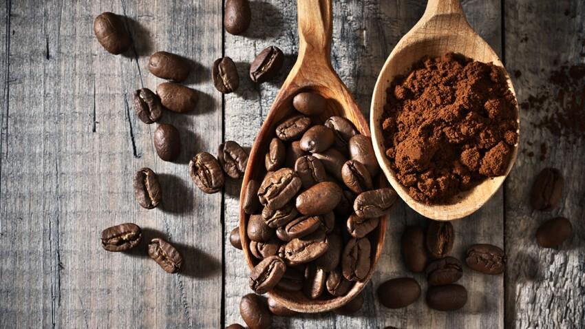 Marc de café : 10 utilisations au jardin et à la maison