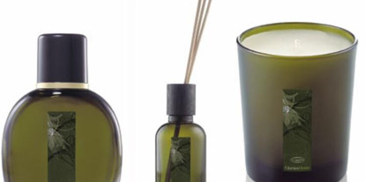 Clarins parfume votre maison avec Clarins Home