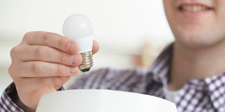 Eco-initiative : distribution de 2 millions d'ampoules LED sur internet