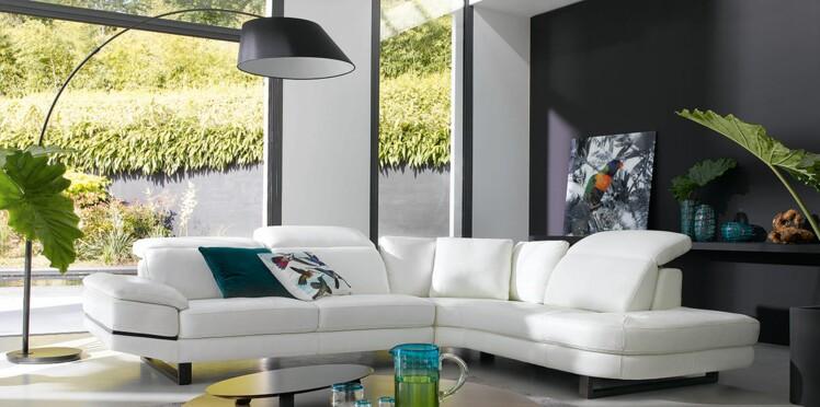 Canapés en cuir : couleur, choix, entretien, ce qu'il faut savoir