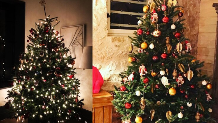 VIDÉO - Valérie Damidot, Laurent Ournac : découvrez les sapins de Noël des célébrités