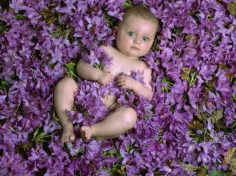 Bébés nature