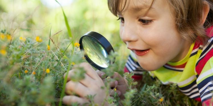 Des idées de sortie pour sensibiliser nos enfants à la protection de l'environnement